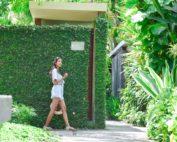 green lush garden at the elysian seminyak bali
